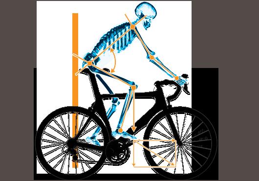 optimale fahrrad sitzposition bike fitting f r rennrad triathlon mtb in berlin spt. Black Bedroom Furniture Sets. Home Design Ideas